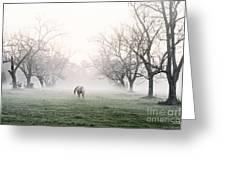 Daybreak Greeting Card by Scott Pellegrin