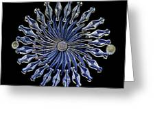 Diatoms, Light Micrograph Greeting Card by Frank Fox