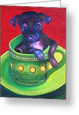 Dog In Cup Greeting Card by Gail Mcfarland