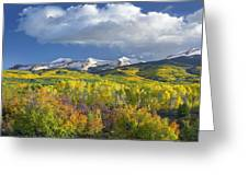 East Beckwith Mountain Flanked By Fall Greeting Card by Tim Fitzharris