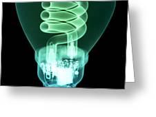 Energy Efficient Light Bulb Greeting Card by Ted Kinsman