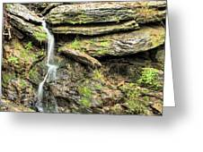 Falling Waters Greeting Card by JC Findley