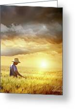 Farmer Checking His Crop Of Wheat  Greeting Card by Sandra Cunningham
