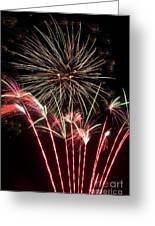 Fireworks Greeting Card by Cindy Singleton