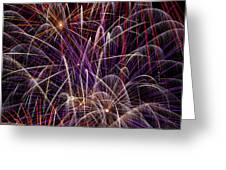 Fireworks Greeting Card by Garry Gay