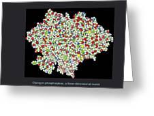 Glycogen Phosphorylase, Molecular Model Greeting Card by Francis Leroy, Biocosmos
