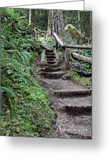 Going Up Greeting Card by Carol Groenen