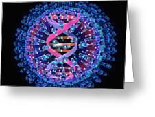 Herpes Virus Particle, Computer Artwork Greeting Card by Mehau Kulyk