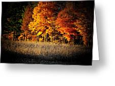 Indiana Autumn Greeting Card by Michael L Kimble