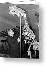 Ivan Yefremov, Soviet Palaeontologist Greeting Card by Ria Novosti