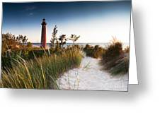Little Sable Point Light Station Greeting Card by Larry Carr