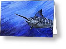 Marlin Greeting Card by Jenn Cunningham