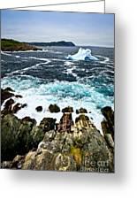Melting Iceberg Greeting Card by Elena Elisseeva