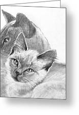 Mother And Child Greeting Card by Susan A Becker