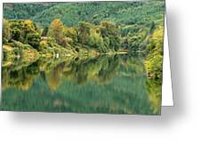 Oregon Green Greeting Card by Katie Wing Vigil