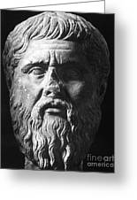 Plato (c427 B.c.-c347 B.c.) Greeting Card by Granger