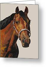 Quarter Horse Greeting Card by Ann Marie Chaffin