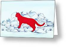 Red Cat Greeting Card by Michaela Bautz