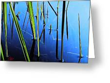 Reflections In Water Greeting Card by Colette V Hera  Guggenheim