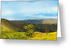 Rinca Panorama Greeting Card by MotHaiBaPhoto Prints