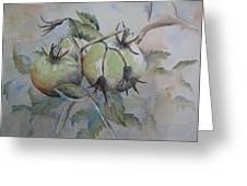 Ripening On The Vine Greeting Card by Ramona Kraemer-Dobson