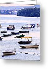 River Boats On Danube Greeting Card by Elena Elisseeva