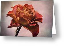 Rose Greeting Card by Bernard Jaubert