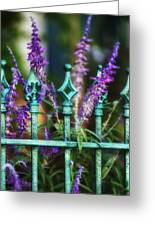 Secret Garden Greeting Card by Brenda Bryant