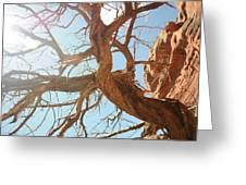 Sedona 013 Greeting Card by Earl Bowser