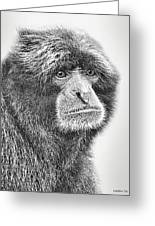 Siamang Greeting Card by Larry Linton