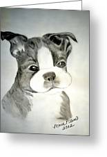 Simply Irresistable Greeting Card by Maria Urso