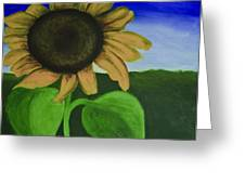 Solo Sunflower Greeting Card by Roxanne Weber