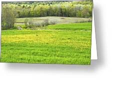 Spring Farm Landscape With Dandelion Bloom In Maine Greeting Card by Keith Webber Jr