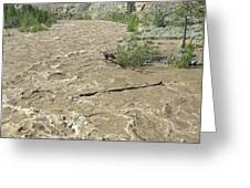 Spring Flood, Nicola River, Canada Greeting Card by Kaj R. Svensson