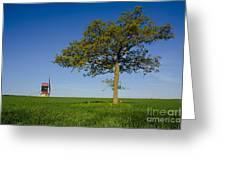 Stevington Windmill Greeting Card by Radoslav Toth