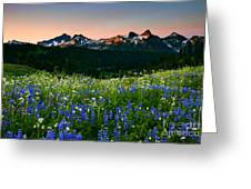 Tatoosh Dawn Greeting Card by Mike  Dawson