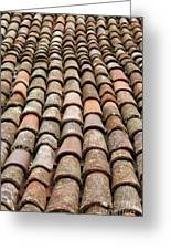 Terra Cotta Roof Tiles Greeting Card by Gaspar Avila