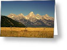 Tetons 3 Greeting Card by Marty Koch