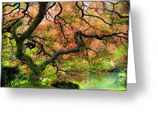 Tree of Beauty Greeting Card by Steve McKinzie