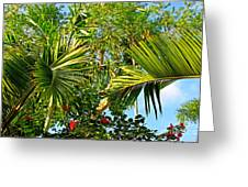 Tropical Plants Greeting Card by Zalman Lazkowicz