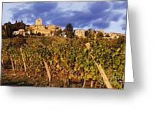 Vineyards Greeting Card by Jeremy Woodhouse