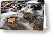 Water On The Rocks Greeting Card by Larry Ricker