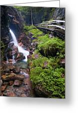 Waterfall  Greeting Card by Sebastian Musial