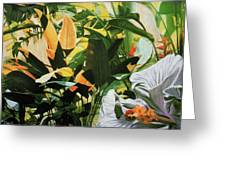 White Hibiscus With Palms Greeting Card by Stephen Mack