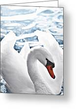 White Swan On Water Greeting Card by Elena Elisseeva