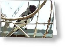 Winter Bird Greeting Card by Artist and Photographer Laura Wrede