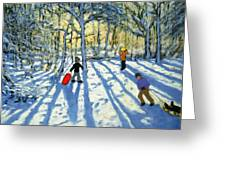 Woodland In Winter Greeting Card by Andrew Macara