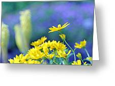 Yellow Flowers Greeting Card by Becky Lodes
