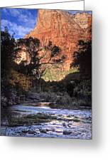 Zion National Park View Greeting Card by Dave Mills