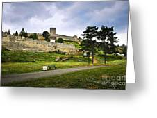Kalemegdan Fortress In Belgrade Greeting Card by Elena Elisseeva